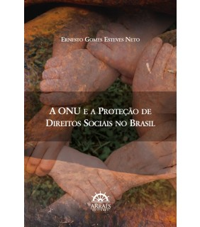 A ONU e a proteção de direitos sociais no Brasil