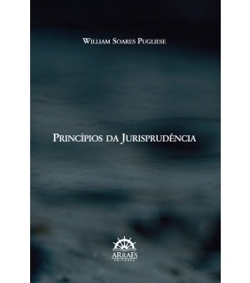 Princípios da Jurisprudência